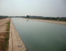 Suối Chợ Tân Phước Khánh