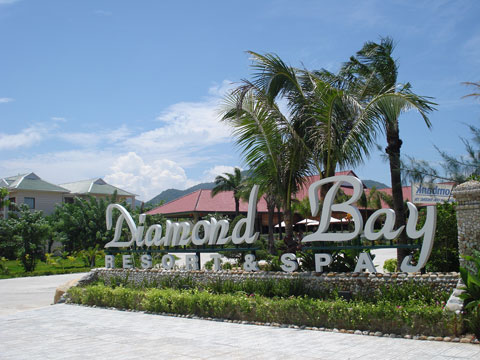 diamondbay tongquan